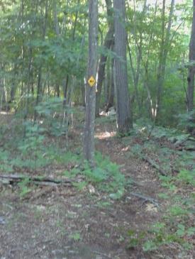 Yellow diamonds with arrow blazes mark the George Ingram Park hiking trails.