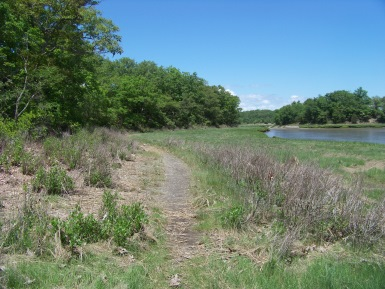trail along the marsh and back river at great esker park