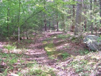 trail leading into private property at Hatch Lots Conservation Area