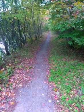 Trail leading from Holly Pond to Campground at Wompatuck State Park.