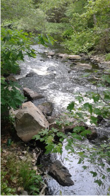 one of many small rapids on indian head river