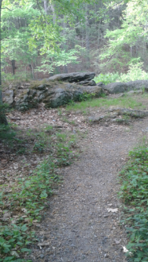connector trail leading to rock overlooking the indian head river