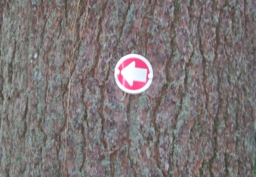 arrow marker in little conservation area