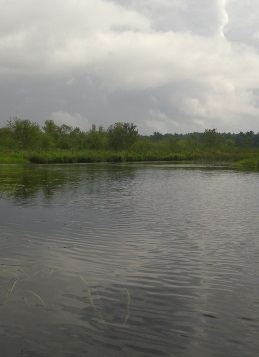 Indian Head River heading toward the junction with Herring Brook