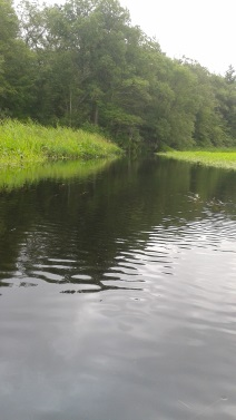 A paddle down Herring Brook