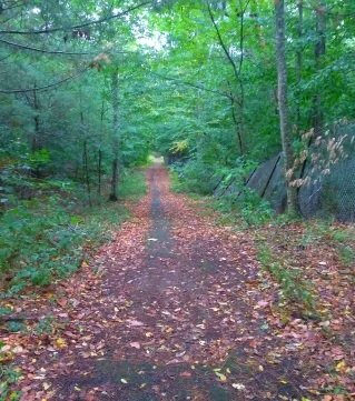 Trail out to picture pond from back gate of Wompatuck State Park.