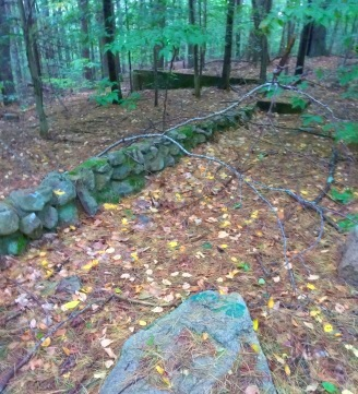 Rock wall and foundation along the picture pond loop in Wompatuck State Park.
