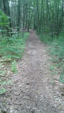 wide cart path at rocky run