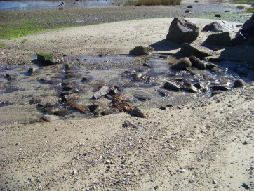small water channel on beach as tide recedes