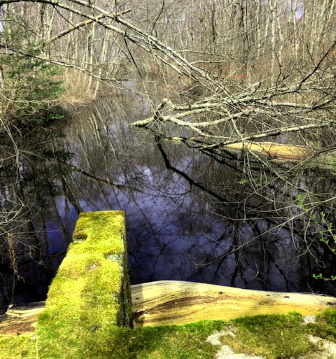 view from sulvert over stump brook