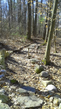 stones line and fill a hiking trail