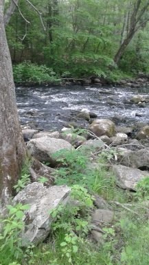 little bit of rapids on the Indian Head River