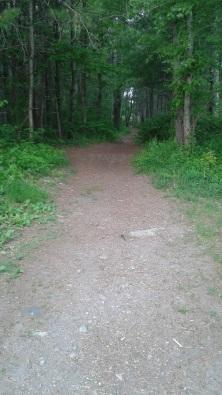 wide hiking trail at tucker preserve