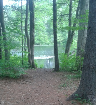 trail leading out to indian head river at tucker preserve