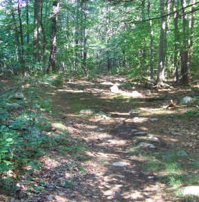 rocky trail below an outcropping on twin ponds trail