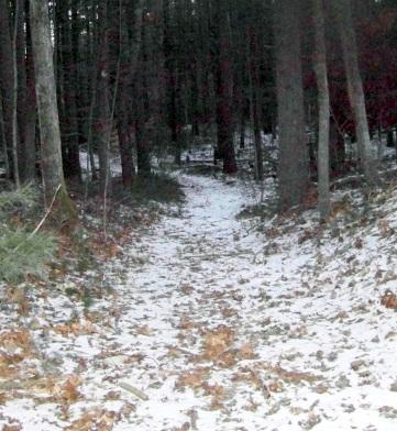 narrow alternate trail at two mile farm