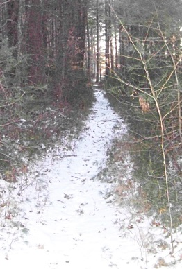 trail leading to private property at two mile farm