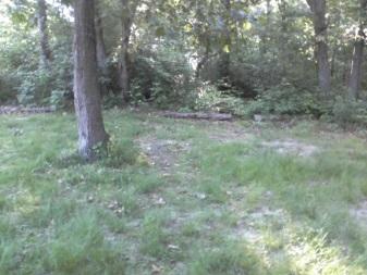weir river woods parking lot