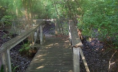 bridge over vernal pond in weir river woods