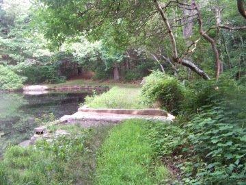 trail alongside skate pond at wheelwright park