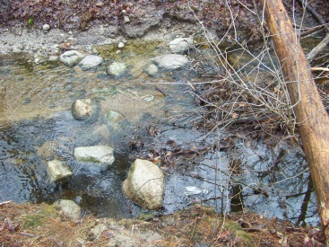 rough stream crossing in whitman town forest