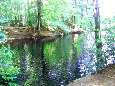 Lagoon next to Holly Pond Beach.
