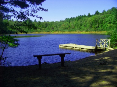 Holly pond in the summer at Wompatuck State Park.